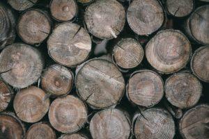 Holzheizungen sind umweltfreundlich